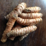 Rhizomes de Curcuma
