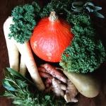 Légumes automnales