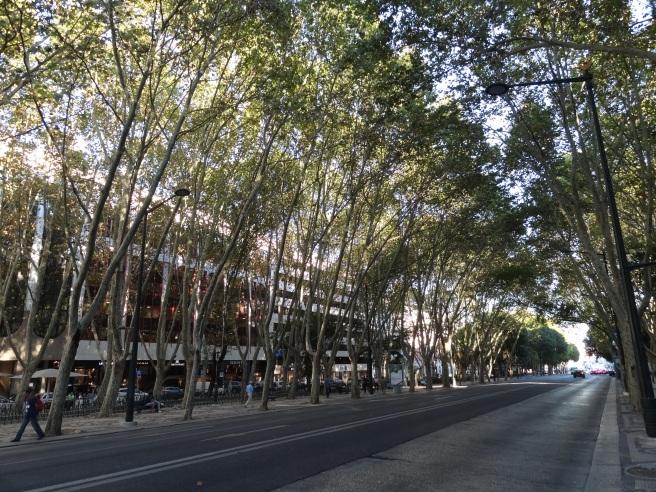 Avenida de Liberdade